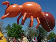The brown ant inflatable helium balloon approved CE